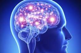 ما هي أفضل الأطعمة والعادات اليومية لتعزيز قوة الدماغ ؟