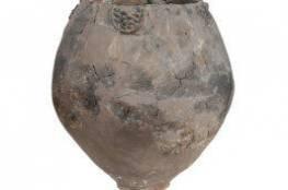 الإنسان احتسى الخمر قبل 8000 عام !