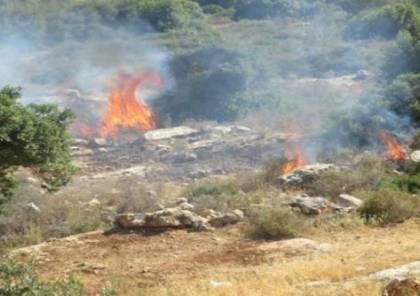 مستوطنون يحرقون أراضي زراعية جنوب نابلس