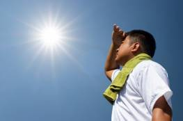 10 مكونات غريبة تخفّف من حدة ضربات الشمس على البشرة