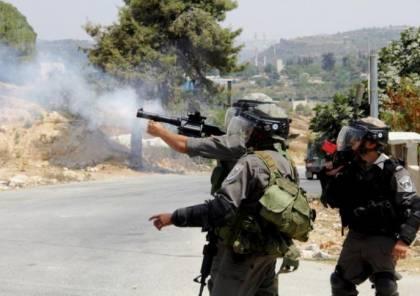 الاحتلال يطلق الرصاص الحي على المواطنين قرب حديقة الحيوان في قلقيلية
