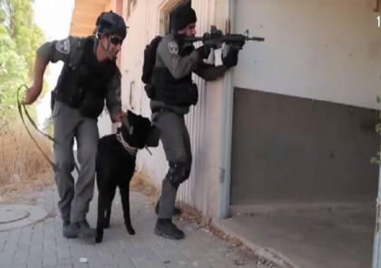 فيديو: الاحتلال يشكل وحدة جديدة وخاصة في حرس الحدود مهمتها تحرير المخطوفين