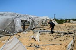 الزراعة بغزة تعلن إجمالي أضرار وخسائر القطاع الزراعي جراء العدوان