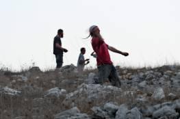 مستوطنون يقطعون 400 شجرة عنب و70 شجرة زيتون شمال رام الله