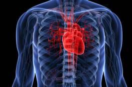 هل تعلم أن قلب الإنسان يشم الروائح !