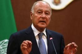 أبو الغيط: القضية الفلسطينية محور مركزي للعمل العربي المشترك في المرحلة المقبل