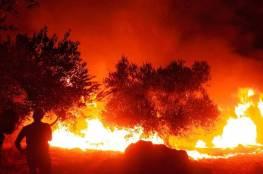 إخماد 13 حريقا في جنين طالت 380 شجرة حرجية ومثمرة