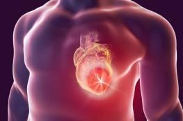 أبرز 4 أعشاب لصحة قلبك