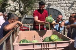 حملاتٌ لدعم مزارعي الأغوار في مواجهة مخطط الضم الإسرائيلي