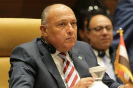 وزير الخارجية المصرية: لن نسمح بأن يتعرض أمننا القومي للخطر نتيجة لتطورات الوضع في ليبيا