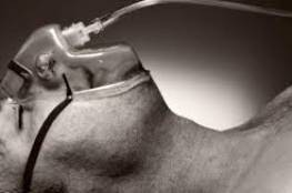 أمراض يمكن أن تسبب الوفاة في غضون 24 ساعة