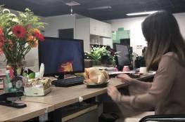 موظفة صينية تطهو دجاجة بمقر عملها !