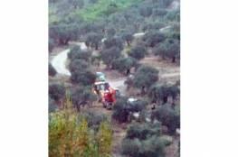 رصد اعتداءات للاحتلال على مشروع زراعي في كفر الديك