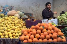 الزراعة بغزة تقرر استيراد الحمضيات ابتداءاً من فبراير المقبل