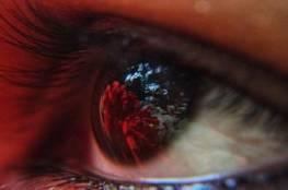 دراسة: تعرض العين للضوء الأحمر العميق يحسن من القدرة البصرية