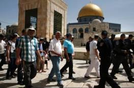 48 مستوطناً وعشرات الطلاب اليهود يقتحمون الأقصى بحراسة شرطة الاحتلال
