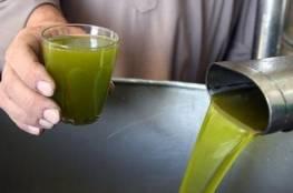 """""""الزراعة"""" تسمح باستيراد زيت الزيتون والبصل من مصر وفقا لتلك الشروط .."""