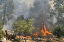 الحرائق تعود مجدداً إلى غابات وأحراش القدس المحتلة