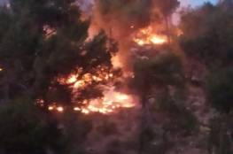 بفعل الرياح .. الدفاع المدني يتعامل مع 51 حريقا خلال 12 ساعة