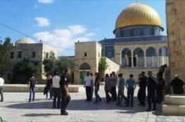 103 مستوطنين و87 طالبًا يهوديًا يقتحمون الأقصى