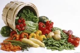 وزارة الزراعة بغزة توضح اسباب انخفاض اسعار الخضروات