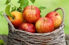 تعرف على أهمية تناول تفاحتين يوميا...