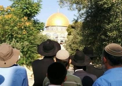 رغم التوتر القائم.. سلطات الاحتلال تسمح لليهود بدخول المسجد الاقصى
