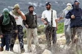 """هآرتس: إسرائيل وظفت """"شبيبة التلال"""" لنهب حقوق الفلسطينيين وحرمانهم من تقرير مصيرهم؟"""