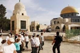 411 مستوطن اقتحموا باحات المسجد الأقصى خلال الاسبوع الماضي