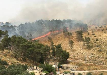نابلس: اندلاع حريق هائل في حرش طلوزة