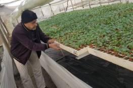 """الزراعة في غزة تُفعل """"الارشاد عن بُعد"""" لفئات المزارعين"""
