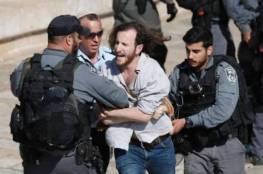 الخليل: الاحتلال يعتقل متضامنين أجنبيين بشارع الشهداء