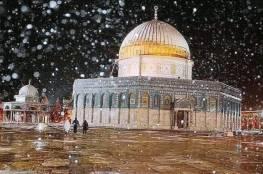 """هل يحل """"الزائر الأبيض"""" ضيفاً على فلسطين هذا العام؟ راصد جوي يرد"""