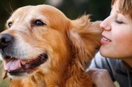 دراسة تتحدث عن فيروس كورونا جديد مصدره الكلاب