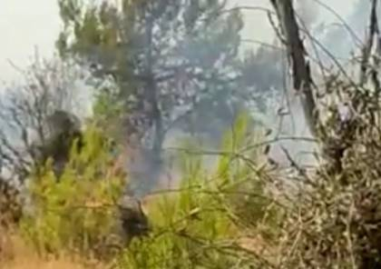 زجاجات حارقة.. حريق كبير قرب مستوطنة جنوب بيت لحم