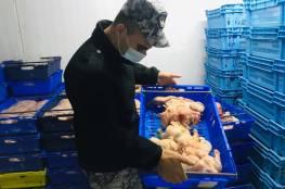الضابطة الجمركية تضبط طن ونصف دجاج لاحم مهرب من إسرائيل في طولكرم