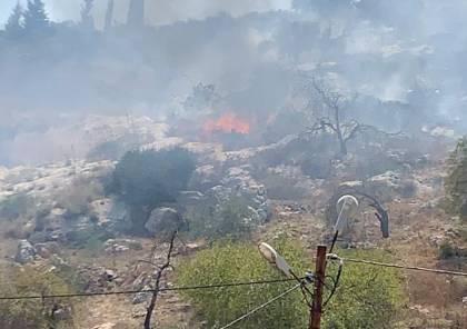 مستوطنون يحرقون أراضي مزروعة بأشجار الزيتون واللوز في حوارة