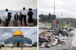 لماذا يهرب ألاف اليهود سنويا من القدس ؟