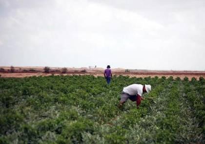 """""""الإغاثة"""" تنظم ورشات توعوية لمزارعي غزة حول الانتهاكات المستمرة للقوانين الدولية"""