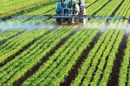 اعتماد المبادئ الأولية للبدء في تنفيذ المشروع الزراعي في موريتانيا