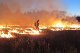السيطرة على حريق كبير قرب فقوعة شرق جنين