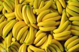 الموز..فاكهة في طريقها للإنقراض!
