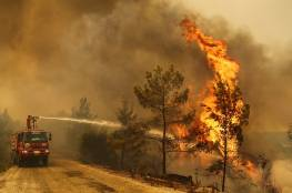 تركيا: السيطرة على 209 حرائق في 47 ولاية خلال الـ10 أيام الأخيرة