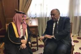 مصر والسعودية تصدران بيان مشترك حول القضية الفلسطينية والملاحة في الخليج