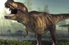 اكتشاف ديناصور عاش قبل 66 مليون سنة في المغرب
