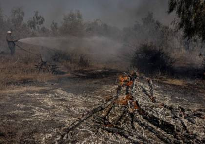 """لليوم الثالث تواليًا: حرائق في مستوطنات """"غلاف غزة"""" جراء البالونات الحارقة"""