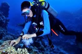 العثور على علاج مرض السل في قاع البحر