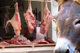 لحوم الحمير والكلاب هاجس يطارد طعام المصريين