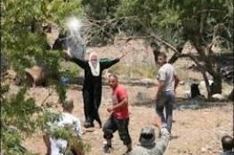 مستوطنون يهاجمون عصيرة القبلية ووادي سود منطقة عسكرية