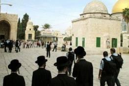 بحماية الشرطة.. اقتحامات جديدة وابعاد سيدتين عن المسجد الأقصى